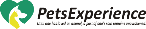 Pets Experience